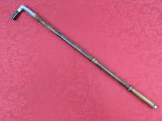 cane1gun1